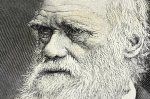 In Darwin We Trust?